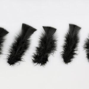 100 Federn, schwarz