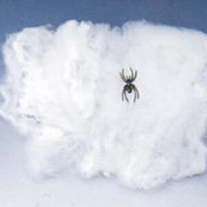 Spinnweben, 1 Spinne, 20 Gr.