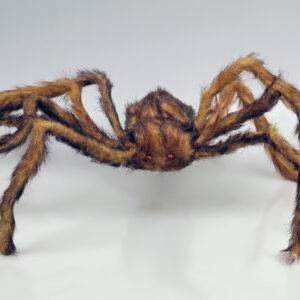 Haarige Spinne braun 24x30cm