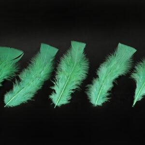 100 Federn, grün