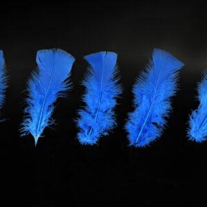 100 Federn, blau