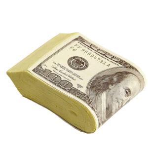 Dollarbündel