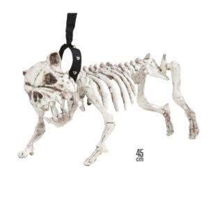 Hundeskelett mit Leine