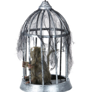 Ratte im Vogelkäfig 32 cm