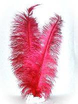 Lange Straußenfedern rot 50cm